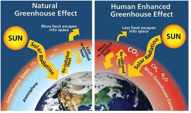 humans responsibility for the greenhouse effect and global warming Examines the science and arguments of global warming the two largest human influences are greenhouse gas (ghg) and tend to have a net cooling effect.